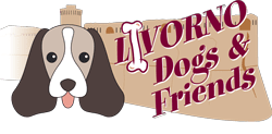 livorno dogs e friends